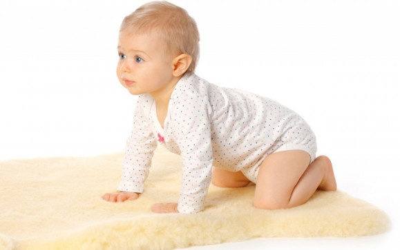Hofbrucker - Baby lambskin Medical 90 - 100 cm Bild 1