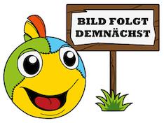 VEDES Großhandel GmbH - Ware 73006414 New Sports Leiter für 366er Trampolin, Bunt Bild 1