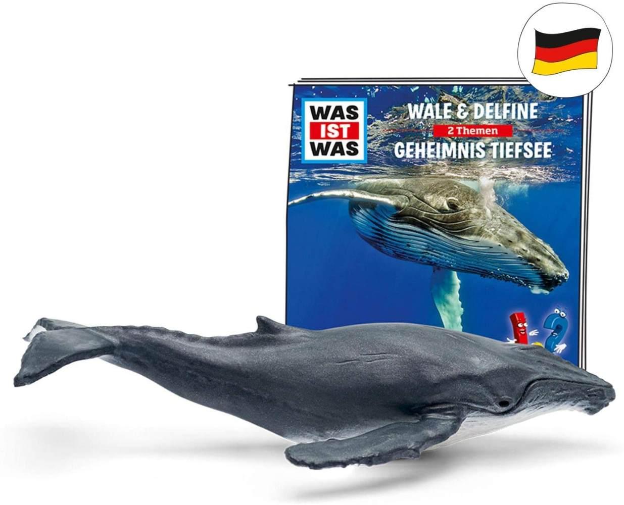 tonies Hörfiguren für Toniebox: was IST was Hörspiel – Wale und Delfine / Geheimnisse Tiefsee - ca. 79 Min - ab 6 Jahre - DEUTSCH Bild 1