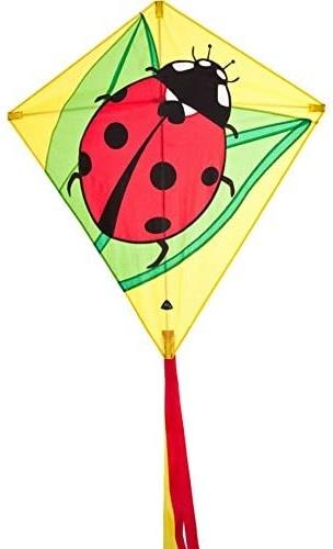 HQ 100069 - Eddy Ladybug Kinderdrachen Einleiner, ab 5 Jahren, 68x68cm und 200cm Drachenschwanz, inkl. 17kp Polyesterschnur 40m auf Spule, 2-5 Beaufort Bild 1