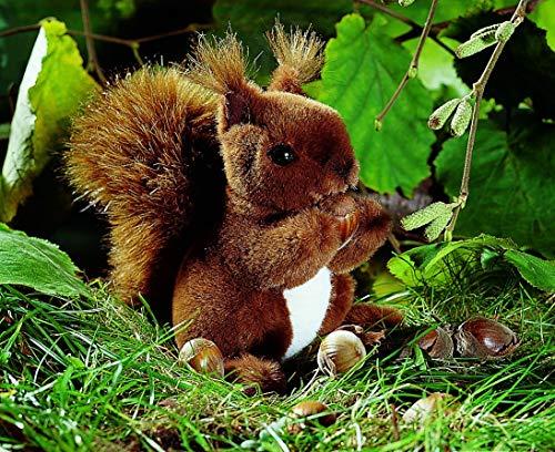 Kösener 3600 - Eichhörnchen, klein Bild 1