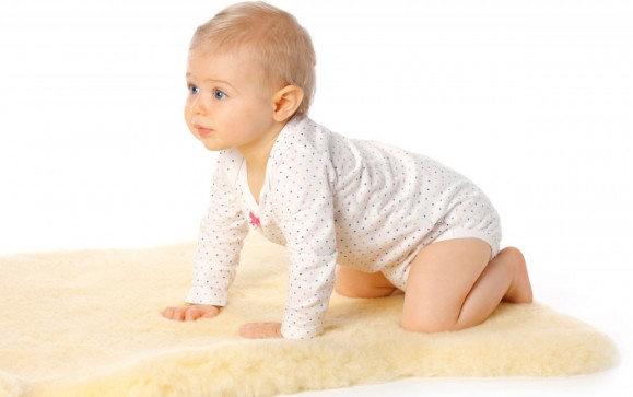 Hofbrucker - Baby lambskin Medical 80 - 90 cm Bild 1