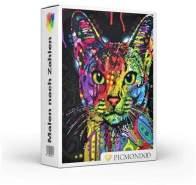 Picmondoo - Malen nach Zahlen Set Die abstrakte Katze 60x75cm