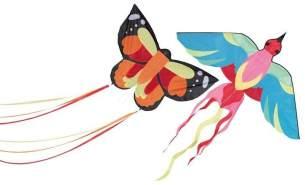 Kinderdrachen Parrot or Butterfly, keine Vorauswahl möglich