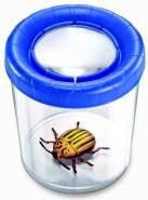 Navir 8027 - Mega Insektenbeobachter, farblich Sortiert