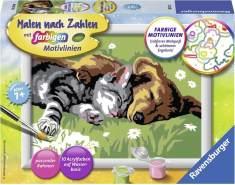 Ravensburger Malen nach Zahlen 28015 - Tiefer Schlaf