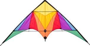 Ecoline 10216730 - Trigger Rainbow Lenkdrachen Zweileiner, ab 14 Jahren, 90x175cm, inkl. 40kp Polyesterschnüre 2x25m auf Spulen, 2-6 Beaufort