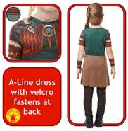 Rubie's 641469S How to Train your Dragon Fancy Dress, Mädchen, mehrfarbig