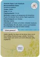 moses. Expedition Natur - 50 heimische Insekten und Spinnen| Bestimmungskarten im Set | Mit spannenden Quizfragen