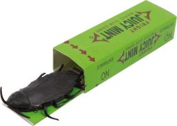 Small Foot Scherz Kaugummi grün junior 9 x 2 cm