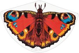 Paul Günther 1103 - Kinderdrachen mit Schmetterling Motiv, Einleinerdrachen aus robuster PE-Folie mit verstellbarer Drachenwaage, für Kinder ab 4 Jahre mit Wickelgriff und Schnur, ca. 92 x 62 cm groß